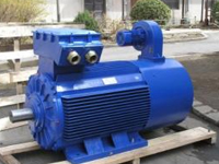 Electrical Motor and Gear Box/Speed Reducer